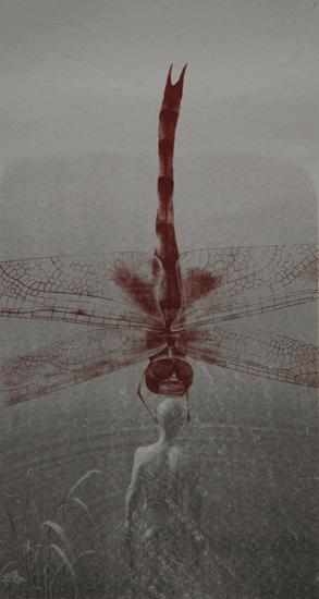 Zhang Huan dragon fly 1