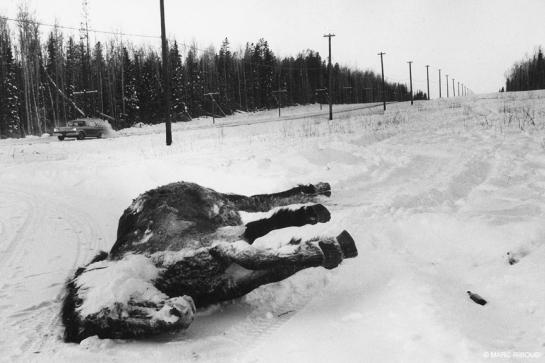 Marc Riboud Vers l Orient ALASk 1958