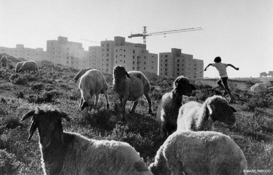 Marc Riboud Vers l Orient israel 73