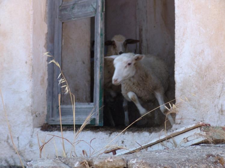 abandoned-house-Mykonos--4