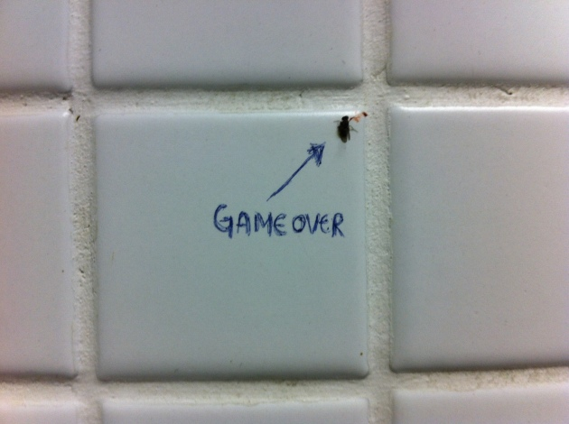 Game over_mosquito