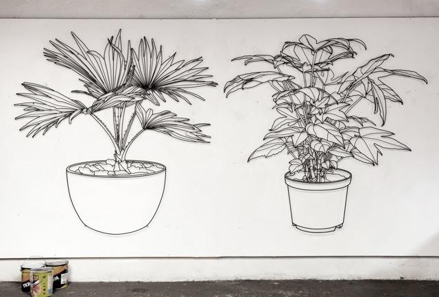 frank-plant-organic