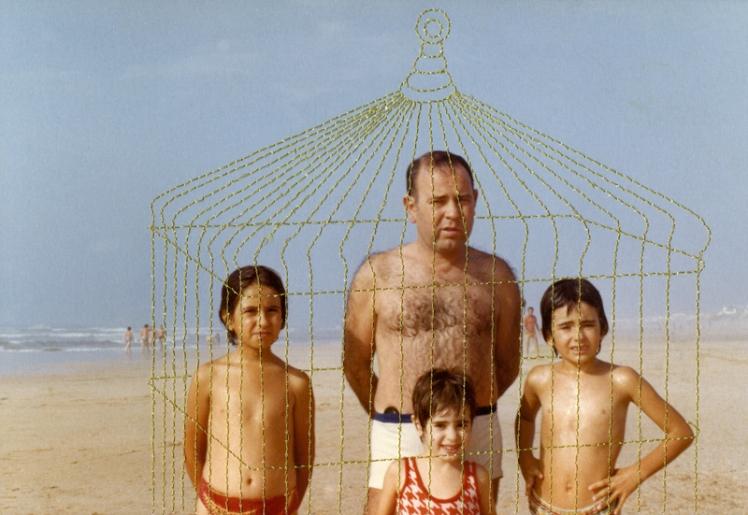 Carolle Benitah cage