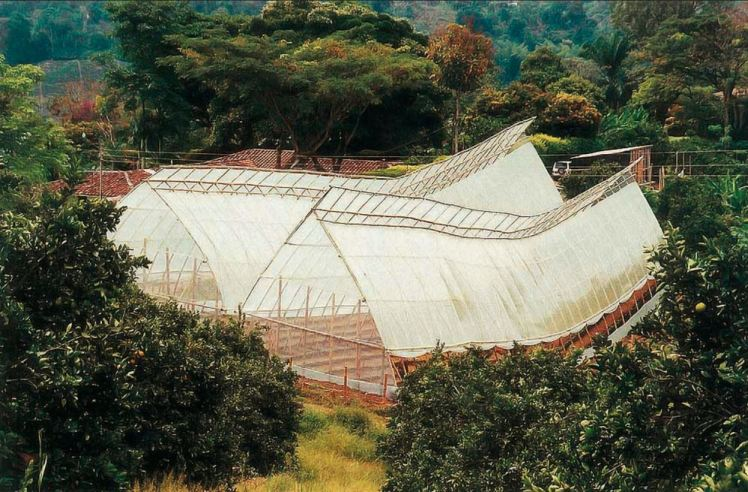 bamboo_greenhouses